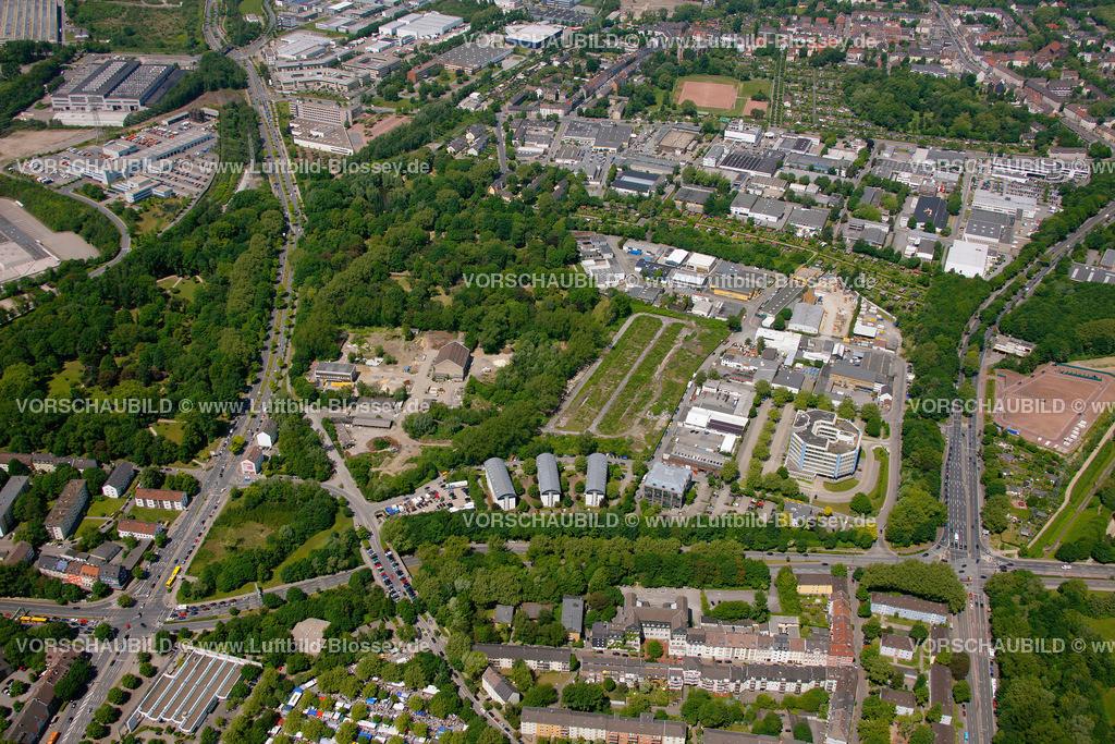 ES10058385 |  Essen, Ruhrgebiet, Nordrhein-Westfalen, Germany, Europa, Foto: hans@blossey.eu, 29.05.2010