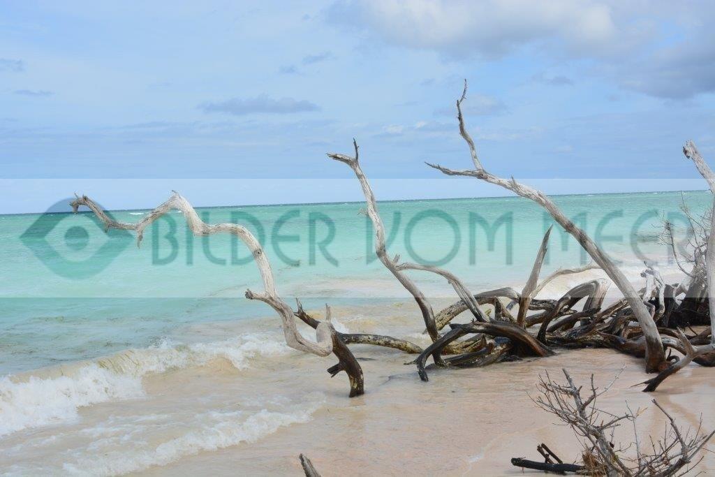 Strand Bilder Kuba   Bilder vom Meer