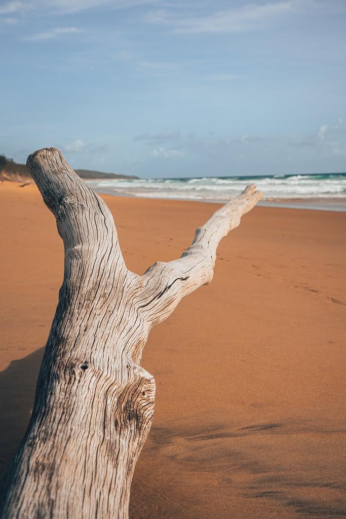 Strand bei Agnes Water in Australien | Strand bei Agnes Water in Australien