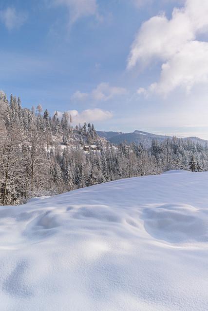 Winterlandschaft bei Steg, Fischenthal