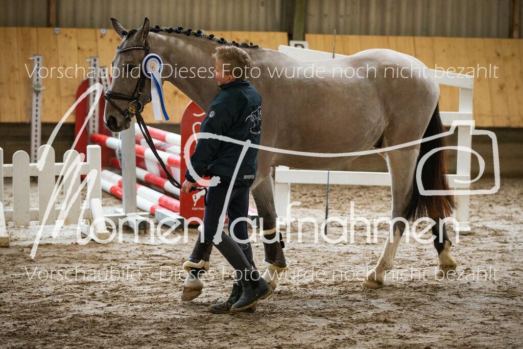 Freispringen-Pony-3j-49