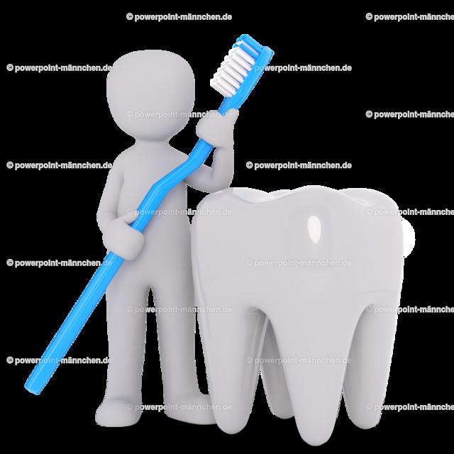 demonstrate how to clean your teeth correctly | Quelle: https://3dman.eu   Jetzt 250 Bilder kostenlos sichern