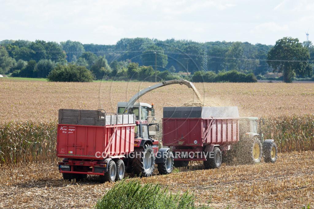 20080914-IMG_9056   Silomais wird gehäckselt - AGRARFOTO Bilder aus der Landwirtschaft