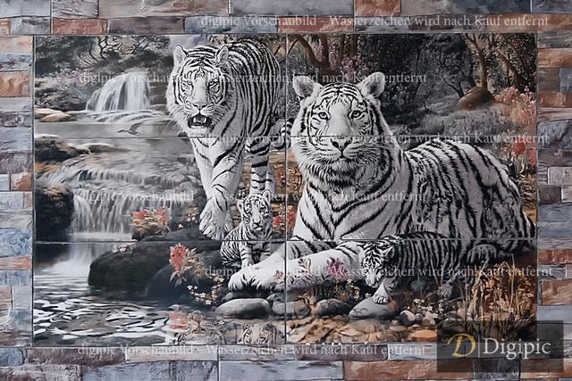 Anlage 20v | Weisse Tiger auf Fliesen