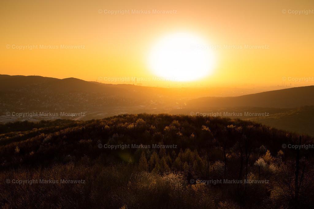 Print_Sunset-3