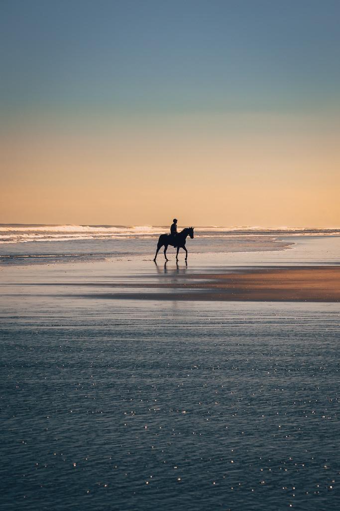 Reiter am Karioitahi Strand in Neuseeland | Reiter am Karioitahi Strand in Neuseeland