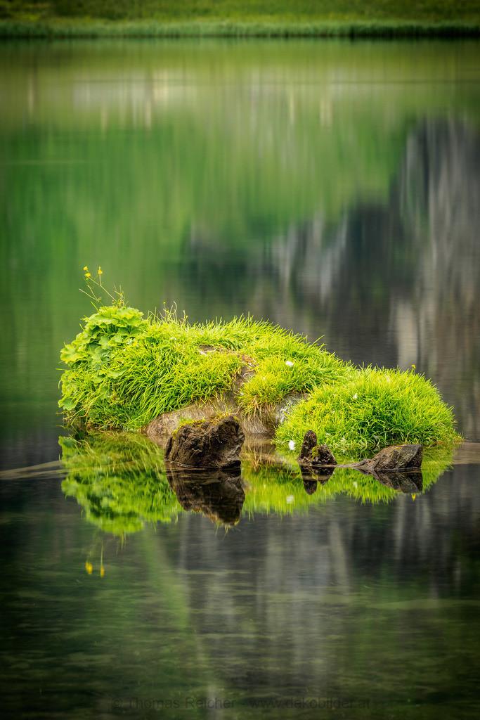 Grünes Wasser 2