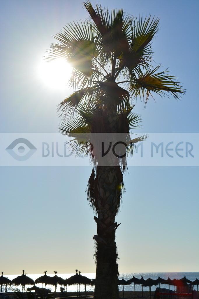 Strand Bilder | Morgensonne in Malaga