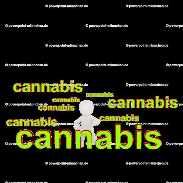 men sitting between cannabis words   men sitting between cannabis words