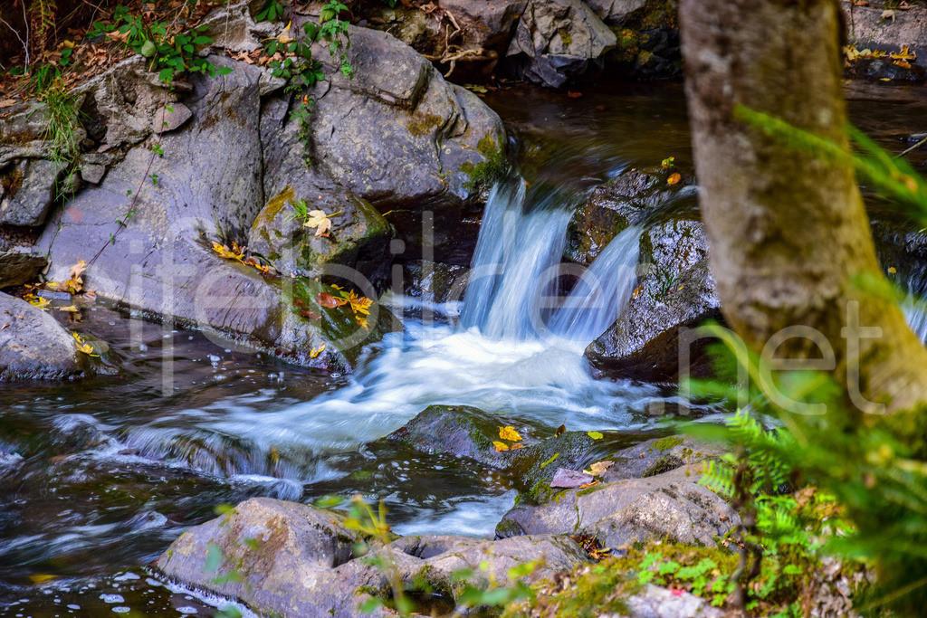 Die Kyll nahe ihrer Quelle (kleine Kyll) | fotografiert an der Wolfsschlucht bei Manderscheid