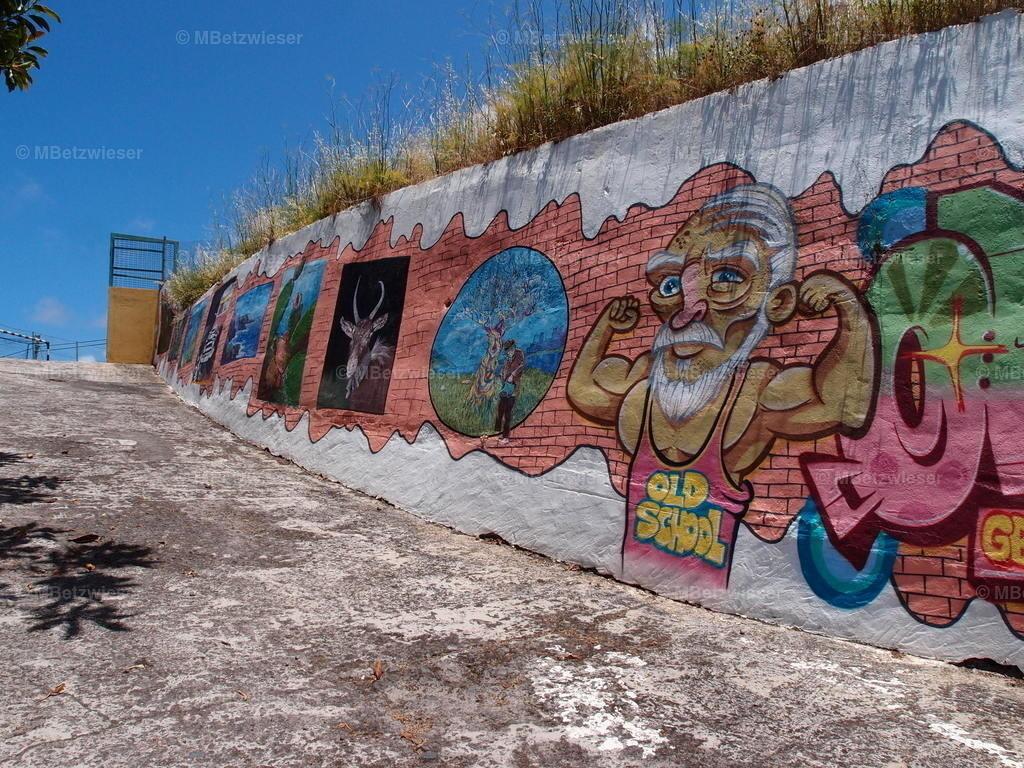 P6286038   #Wandmalerei zum Sportplatz in Franceses