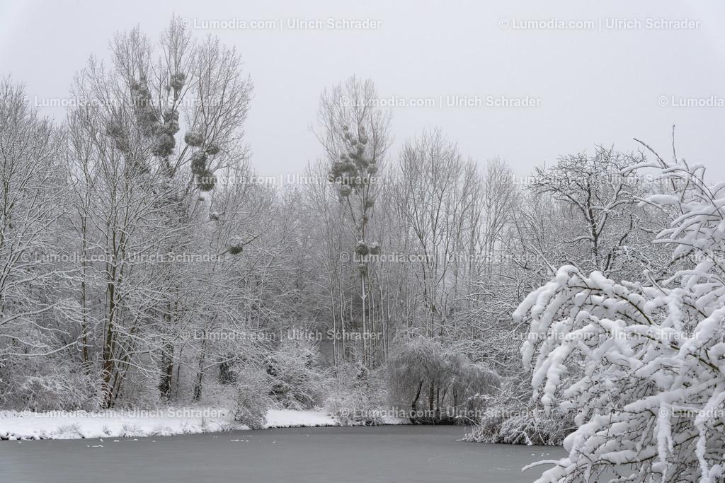10049-11984 - Am Röderhofer Teich