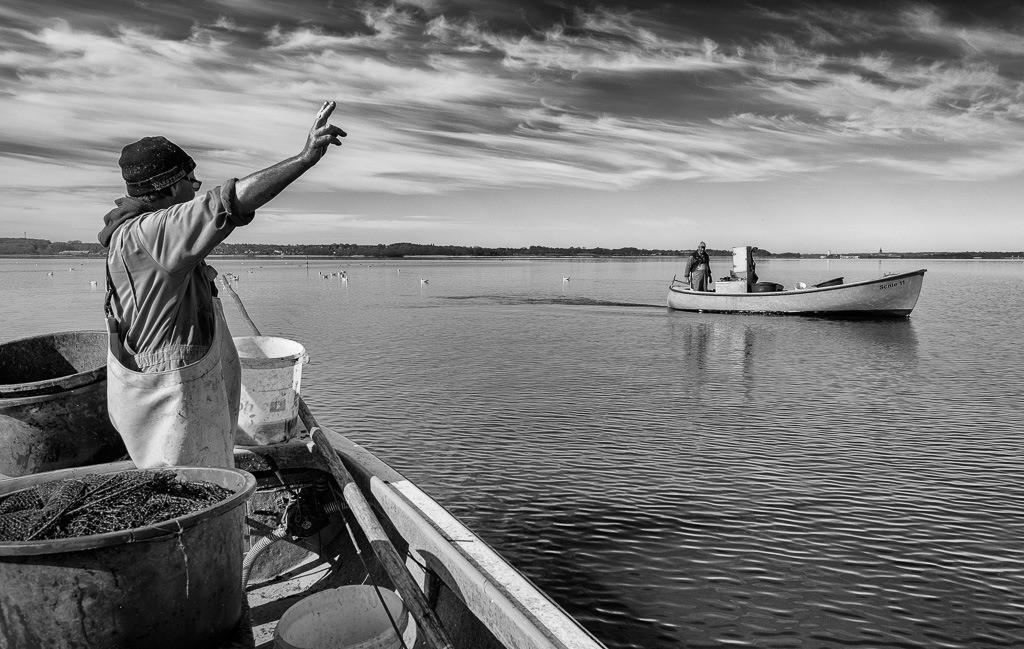 Matthias Nanz – ein Fischer an der Schlei © Holger Rüdel | Matthias Nanz aus Schleswig ist einer der letzten Berufsfischer an der Schlei. Bei dieser Fangfahrt Ende April auf der Großen Breite der Schlei begegnete er seinem Kollegen Jörn Ross, dem Ältermann der Holmer Fischerzunft.