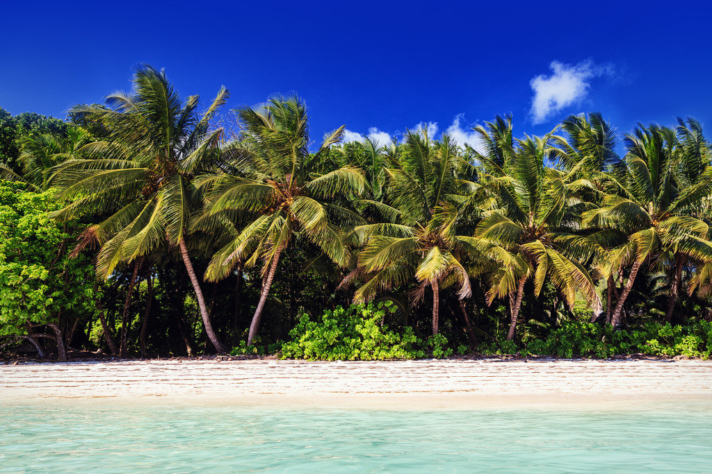 076-Seychellen-Praslin-3