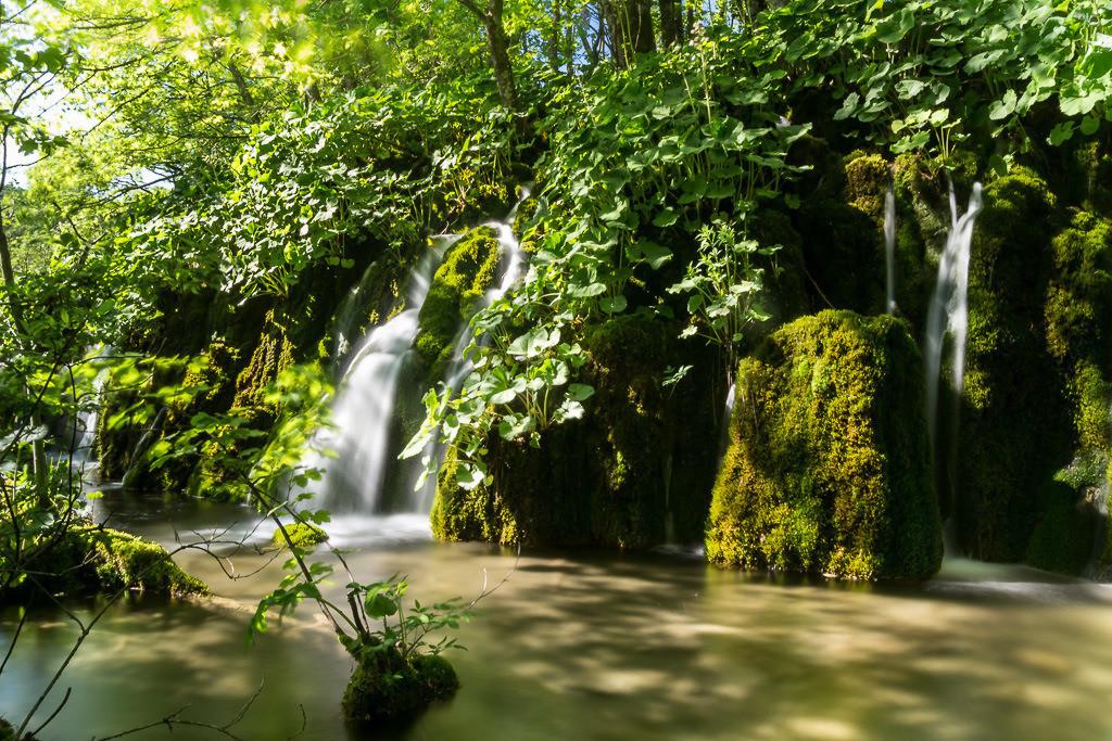 Langzeitbelichtung Plitvicer Seen im Wald