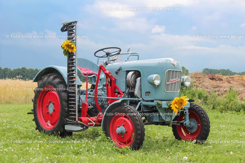 Eicher EM 100 Leopard Traktor, Schlepper, 1963 (1960-66) | Eicher EM 100 Leopard, Traktor, Schlepper, Farbe: Blau, Baujahr: 1963, Bauzeit: 1960-1966, Leistung 16 PS (bis 1962: 15 PS), BRD, Deutschland