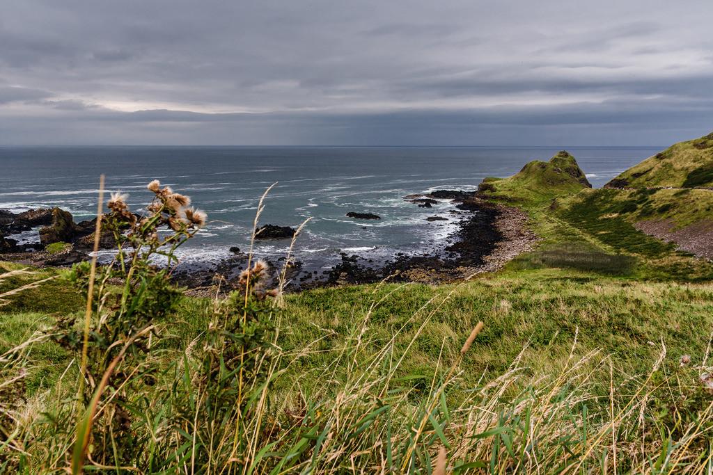 Ireland-Giants Causeway (6)
