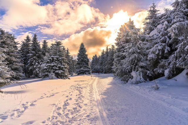 Natur_Winter_Schneekopf_012021-00107