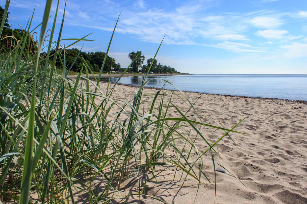 Strand in Lehmberg | Strand in Lehmberg im Sommer