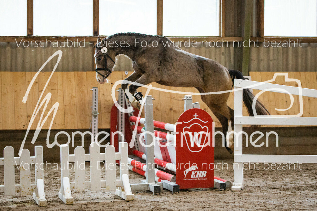 Freispringen-Pony-3j-23