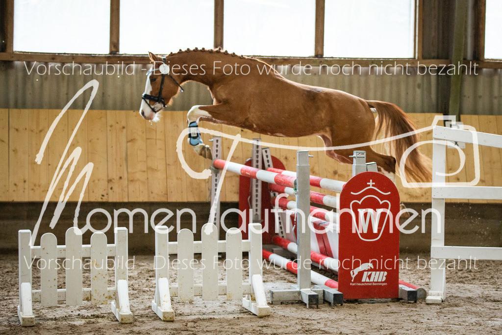 Freispringen-Pony-3j-37