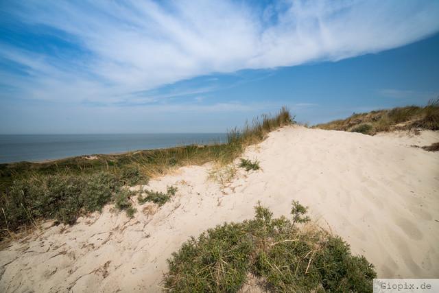 Sanddünen Nieuw Haamstede | Sanddünen am Strand von Nieuw Haamstede