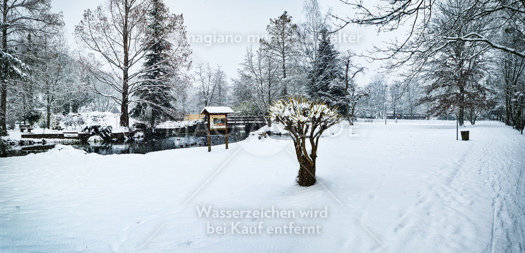 Winter in der Eppenbunner Parkanlage - Januar 2021