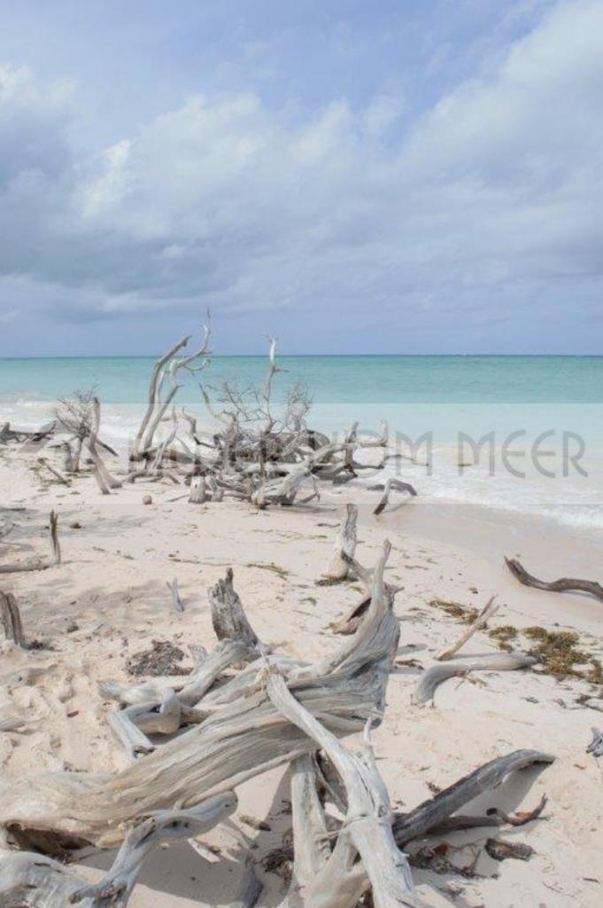 Fotoausstellung Bilder vom Meer | Strandbild der Insel Cayo Jutías aus Kuba