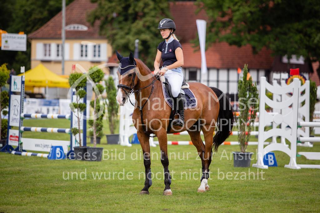 190719_LC_SprPf-A-019 | Lopshorn Classics 2019 Springpferdeprüfung Kl. A** 4-5 jährige Pferde