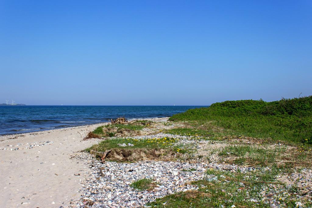 Langballigau im Frühling   Strand in Langballigau im Frühling