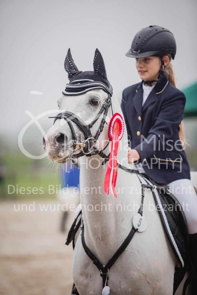 190406_Frühlingsfest_StilE-083 | Frühlingsfest der Pferde 2019, von Lützow Herford, Stil-WB mit erlaubter Zeit