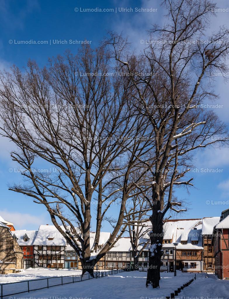 10049-11822 - Quedlinburg am Harz _ Weltkulturerbestadt | max. Auflösung  5504 x 8256