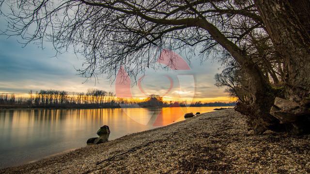 Sonnenuntergang an der Donau   Langenstein, OÖ