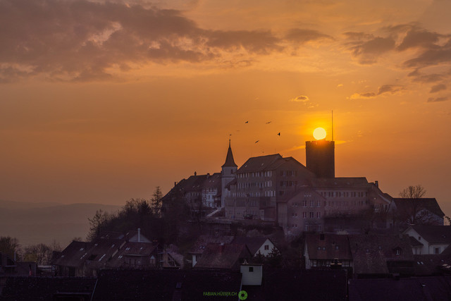 Schloss Regensberg | Sonnenaufgang über dem Schloss Regensberg