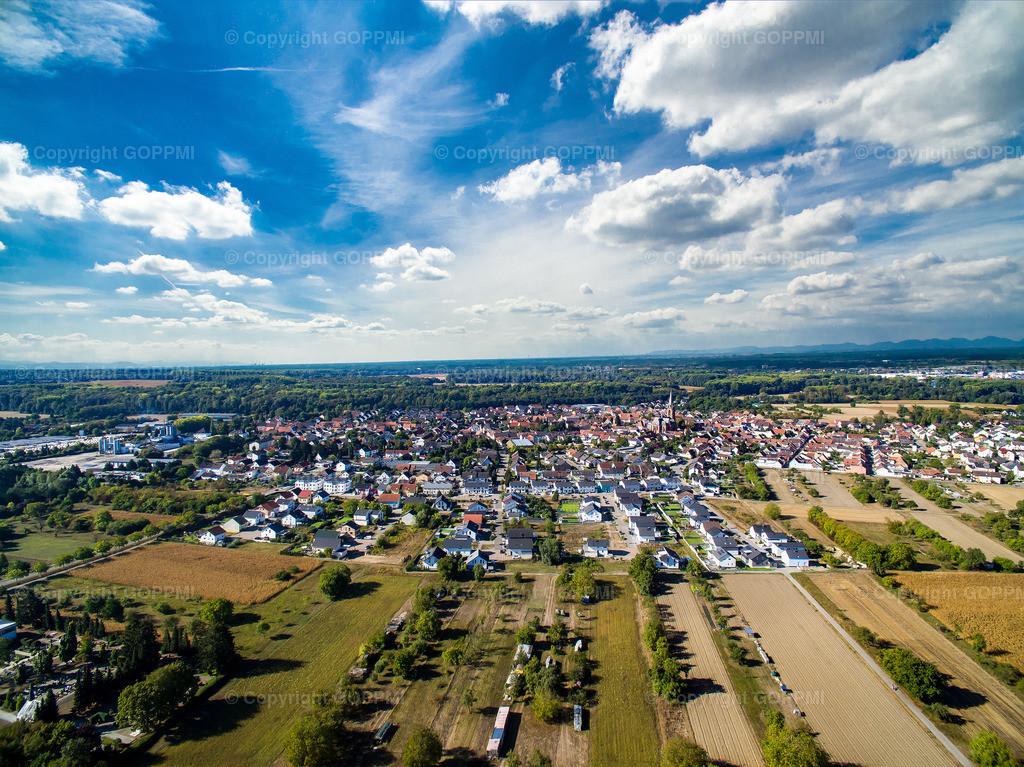 Nr. 24 Rheinsheim DJI_0672