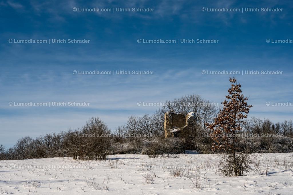 10049-11968 - Winter im Huy _ Paulskopfwarte