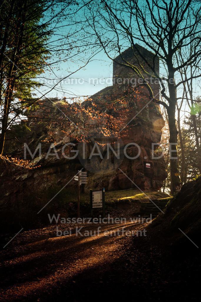 Burg Blumenstein