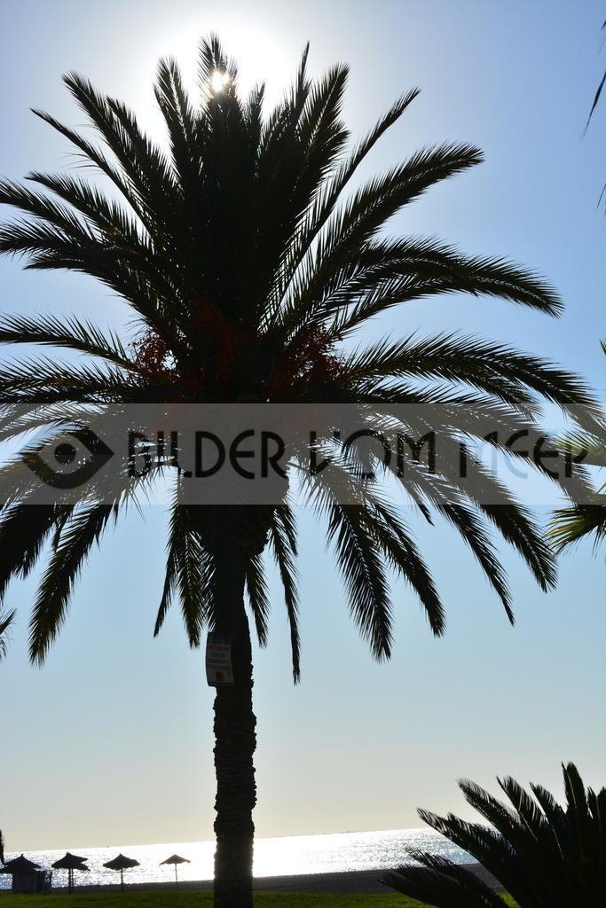 Strand Bilder | Morgensonne am Strand in Malaga
