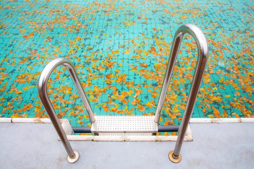 JT-171024-095 | Freibad, leer, Saisonende, Herbst, verlassen, Treppe, Badeleiter, Herbstlaub, Blätter im Wasser des Schwimmbeckens,