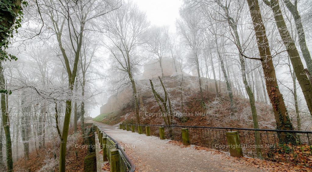 DSC_6612 | Bensheim-Auerbach, Schloss Auerbach, vereiste Äste verwandelten den Weg zum Schloss und das ganze Schlossareal in eine Winterliche Märchenlandschaft, Schmuckbild, ,, Bild: Thomas Neu