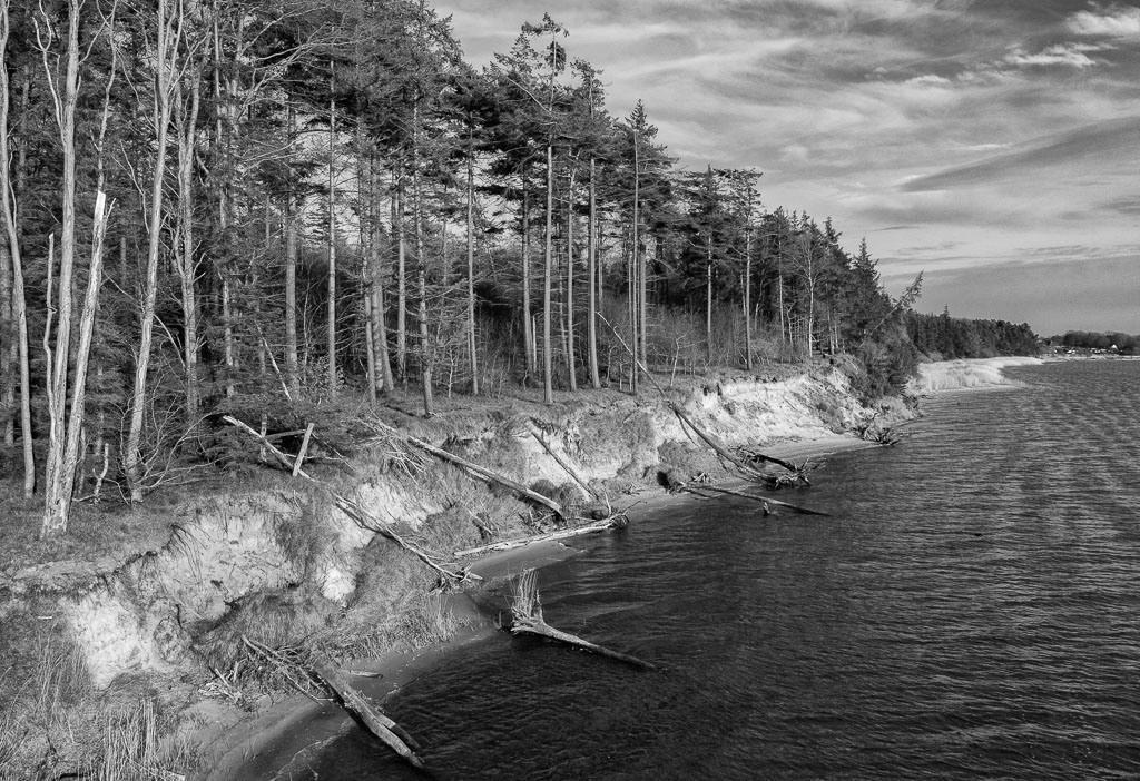 Steilküste bei Weseby an der Schlei © Holger Rüdel | Luftaufnahme der Steilküste zwischen Missunde und Weseby an der Großen Breite der Schlei. Dahinter erstreckt sich ein ausgedehnter Wald. Das Kliff ist durch Erosion gefährdet.