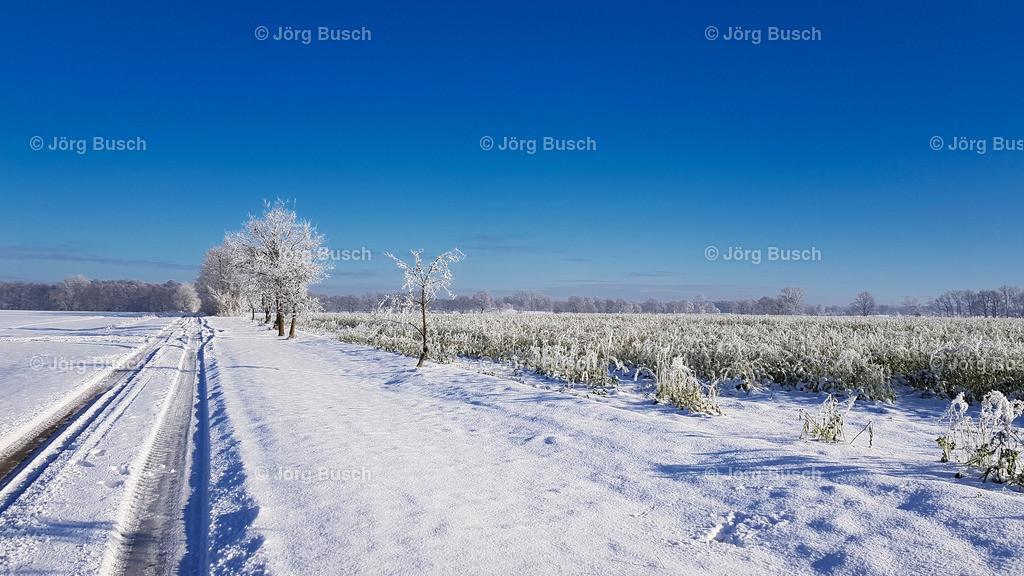 Winter_02