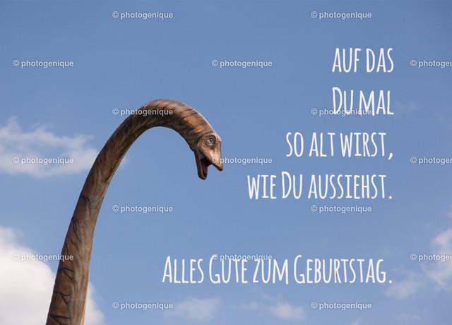 Dino_dass-du-mal-so-alt-wirst-web