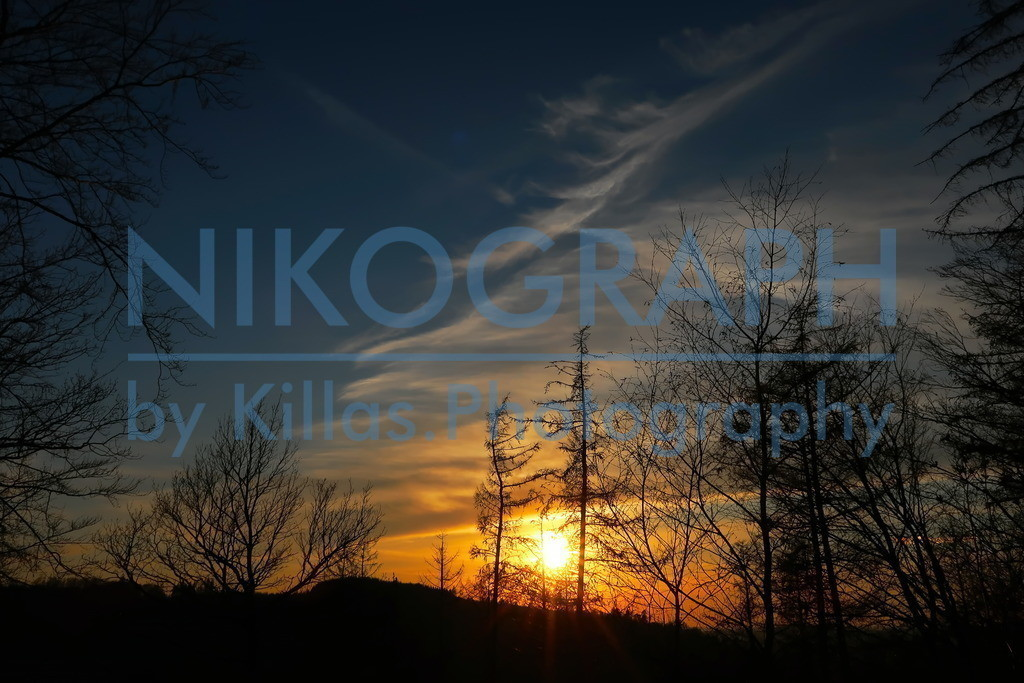 Sonnenuntergang | Sonnenuntergang im Iserlohner Stadtwald