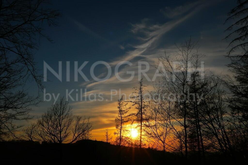Sonnenuntergang   Sonnenuntergang im Iserlohner Stadtwald