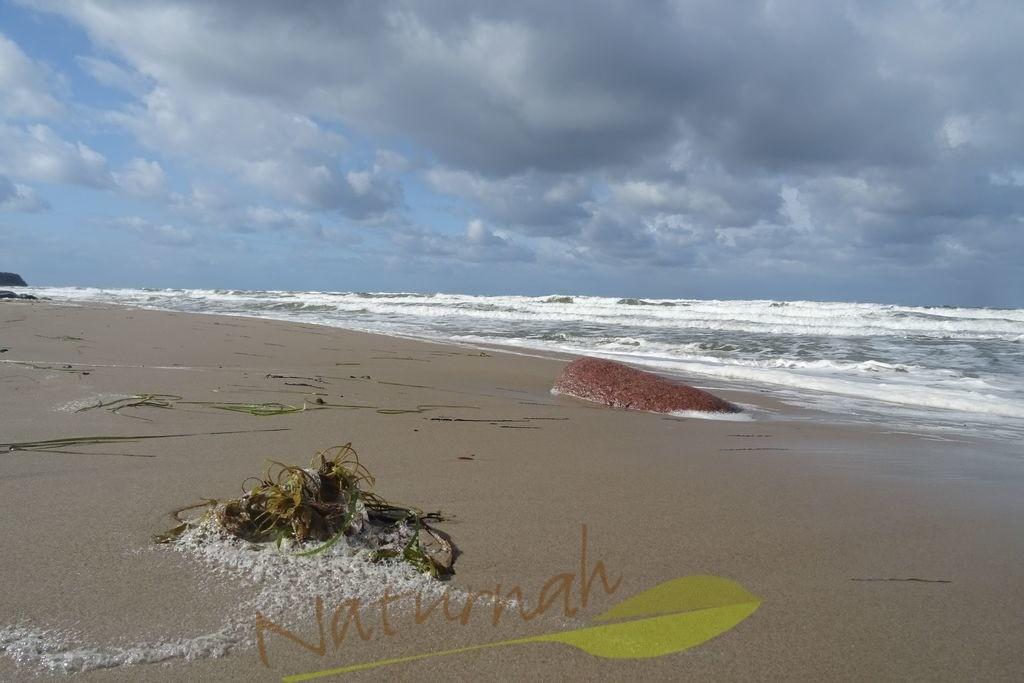 Komm | Komm! Die Perspektive lädt ein, Fußspuren im Sand zu hinterlassen und Sonne, Wind und Ostsee zu genießen!
