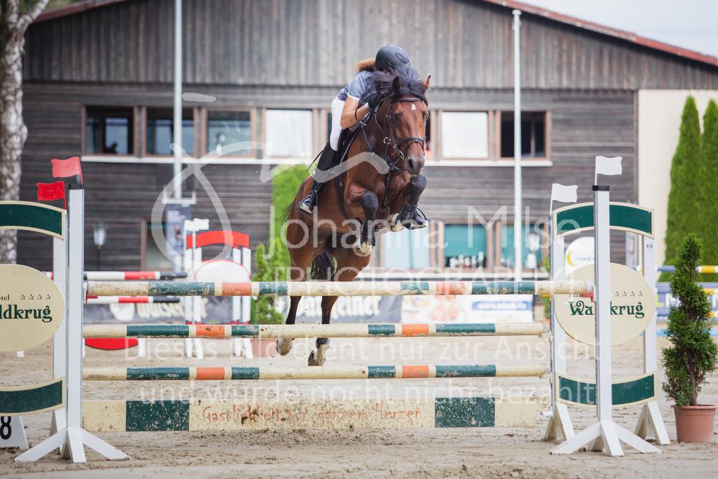 200821_Delbrück_Youngster-M-632 | Delbrück Masters 2020 Springprüfung Kl. M* Youngster Springen 6-8jährige Pferde