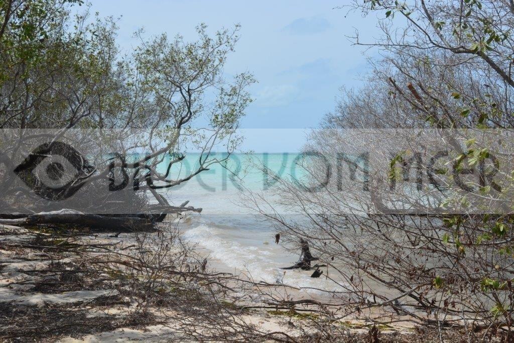 Bilder vom Meer | Blick auf das kubanische Meer