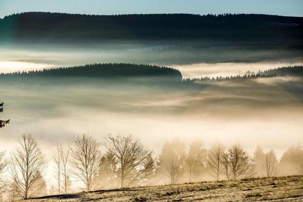 JT-131211-4244 | Sauerland, Morgennebel im Tal bei Winterberg, Blick nach Elkeringhausen