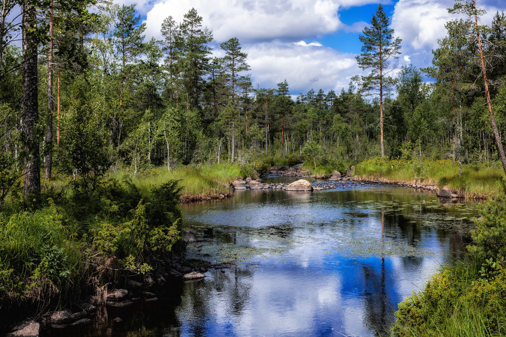 Sommer in Schweden | In der Region Värmland gibt es viele Wasserflächen und Bäche.